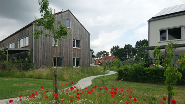 The Vinderhoute cohousing project in Belgium – scores of similar collective housing projects are underway across Belgium. Credit - Ted Stevens.